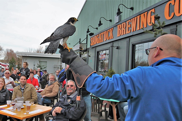 birds-and-brew--13_43987739192_o