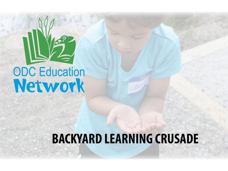 Backyard Learning Crusade Logo