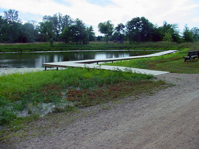 Catch and Release Fishing Pond