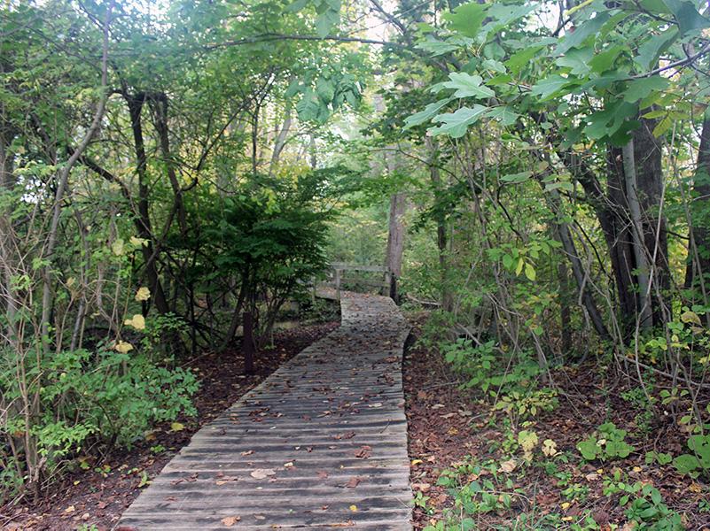 DeGraaf Trails