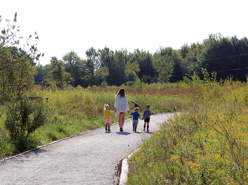 children walking on trail through grassland