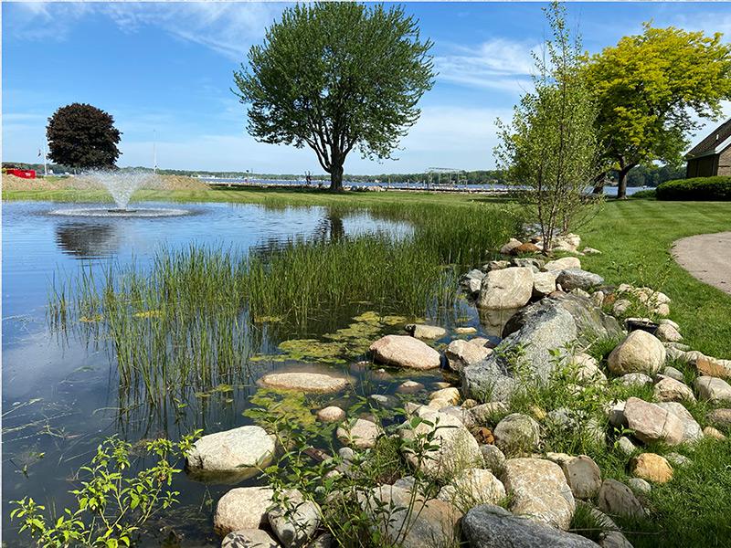Pond Restoration and Shoreline Stabilization after completion