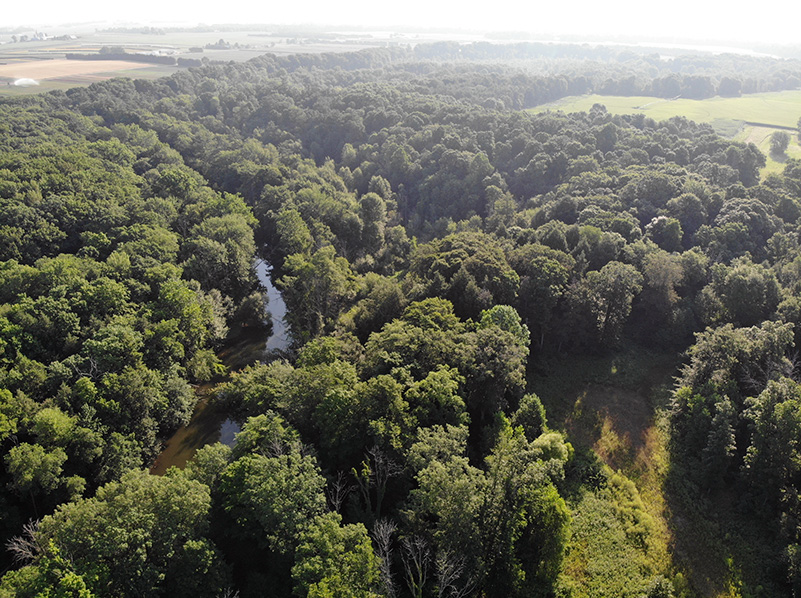 Aerial view of river at Rabbit River Preserve