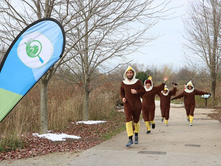 Trail runners dressed up as birds for migratory 5k
