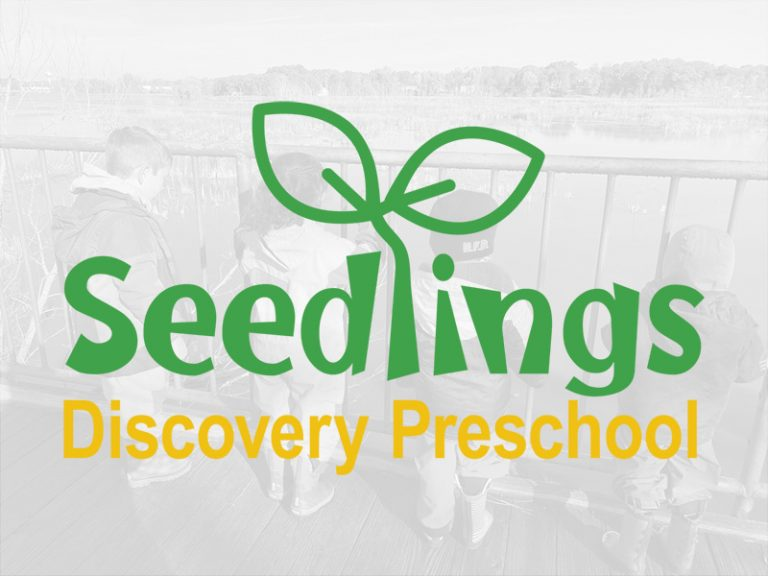 Seedlings Discovery Preschool Logo