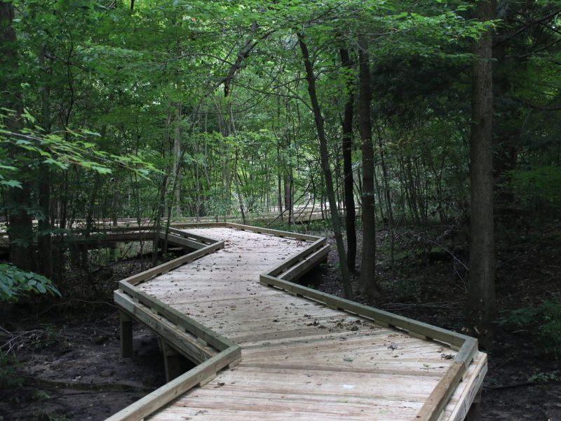 Rabbit River Preserve