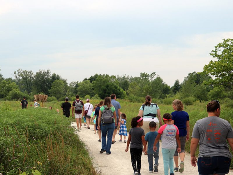 Visitors walking along trail through meadow