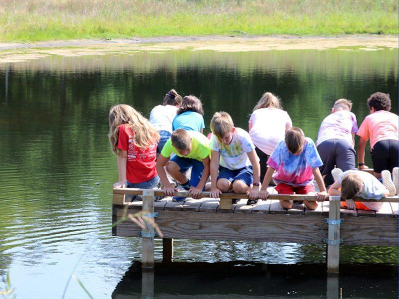 children observing pond from dock