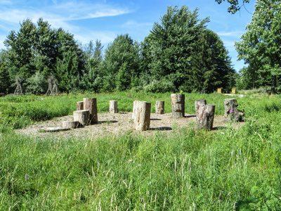 stump sitting area